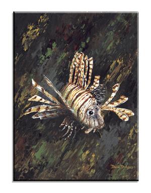 5047 Lionfish