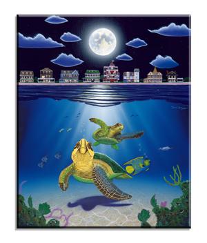 5048 Turtle Drive