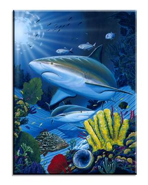 5051 Shark Fest