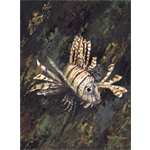 Lion Fish Limited Edition Giclee