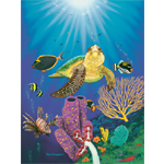 Turtle Reef 2 Limited Edition Giclee